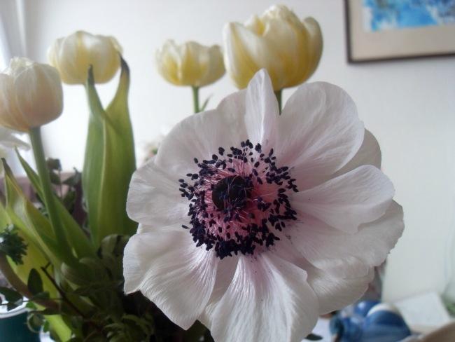 Blomsterne synger på sidste vers