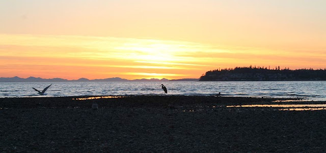 May/June 2014 - 1st Place - Birch Bay Sunset / Credit: Carole Murray