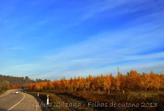 Glória Ishizaka - Folhas de Outono 23