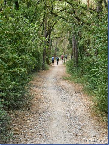 caminho de santiago 338