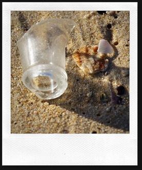 shell18