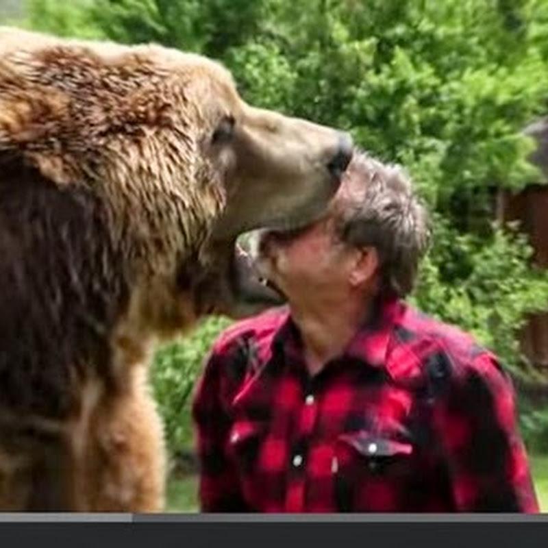 Πάλη με μία αρκούδα στον κήπο μου