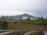 Sibuatan as seen from near Naga Linga (Daniel Quinn, August 2011)