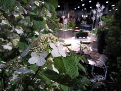 2012 Boston Flower & Garden Show 012