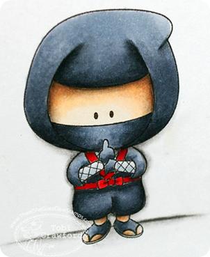 ninjaclose