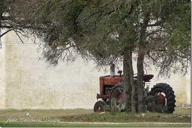 Tractor_kk_sunday