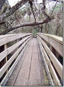 Hillsborough River State Park 011