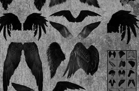 Pinceles de alas emplumadas de ángel
