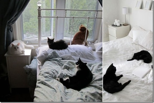best-nap-locations-30