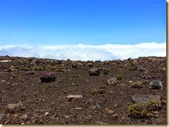 20140506_volcanic soil haleakala crater (Small)