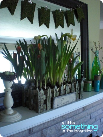 Spring Mantel Side Angle