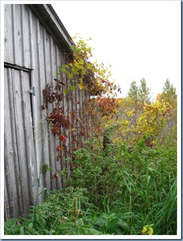 20111012_property_005