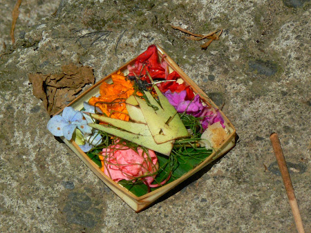 Bali pictures: balinese offerings