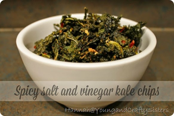 spicy salt and vinegar kale chips