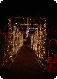 Dec._10_evening_2011-453