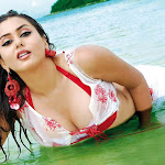 Namitha Hot (23).jpg
