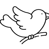 oiseau1.jpg