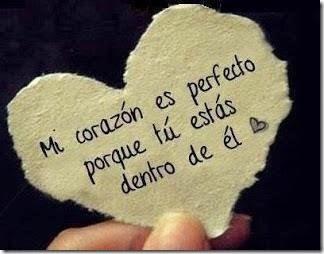 amor blogdeimagenes (4)