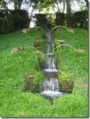 2012.08.01-021 cascade de tortues