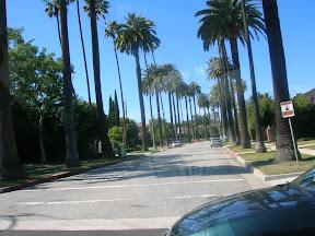 023 - Beverly Hills.JPG