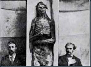 mumias gigante
