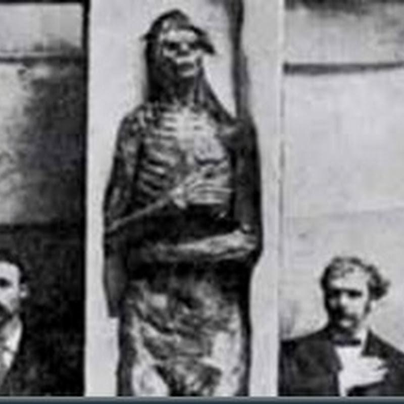 O mistério dos 18 Esqueletos Gigantes de Wisconsin