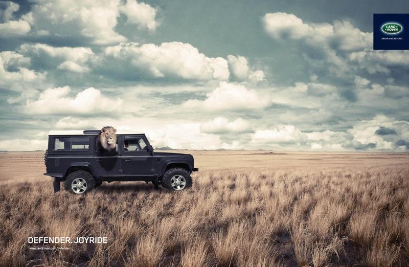 Joy land rover