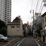 yoyogi in Tokyo, Tokyo, Japan