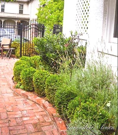courtyard 058