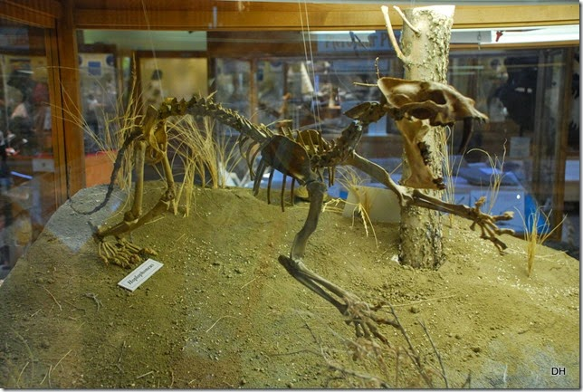 07-08-14 B Tate Geological Museum (7)
