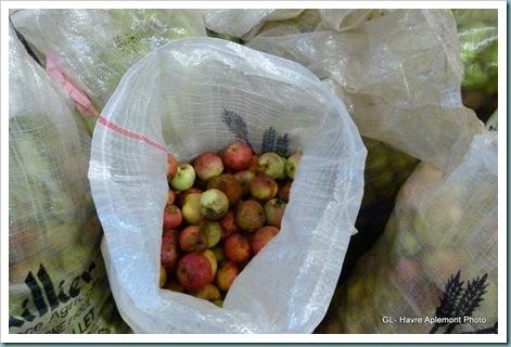 pommes 021