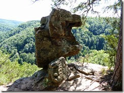 Whitaker Point AR
