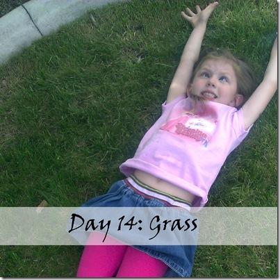 Day 14 grass