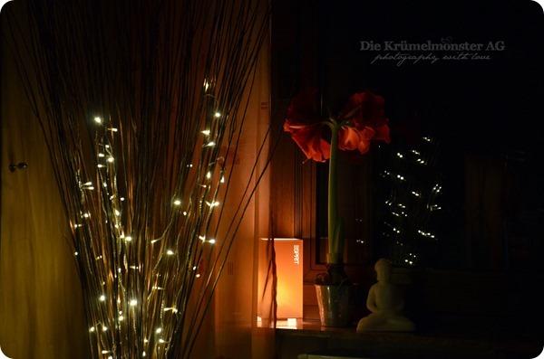 Lichterglanz - Weidenlämpchen (6)