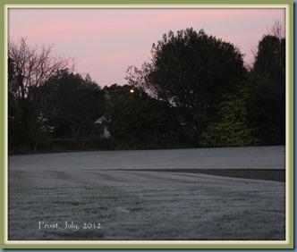 Lawn frost, July 2012