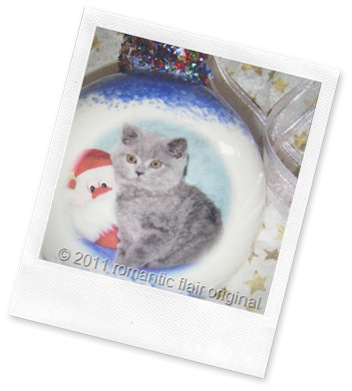personalized-pet-keepsake