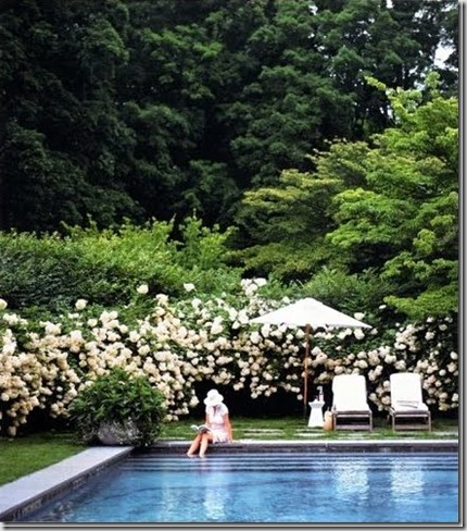 ThePerfectPoolMarthaStewartLiving1_t[1]