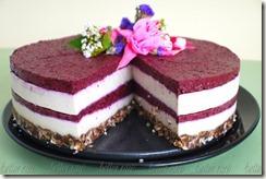 Better Raw Birthday Cake Tanya Alekseeva