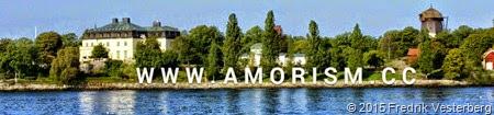 2015-02-06_11.55.20-752874 Waldemarsudde från sjön med amorism foto av Fredrik Vesterberg