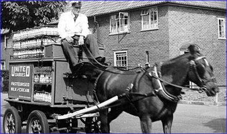 d-horse-milkcart-1111