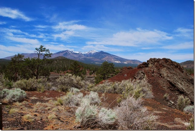 05-06-14 C Sunset Crater NM (90)