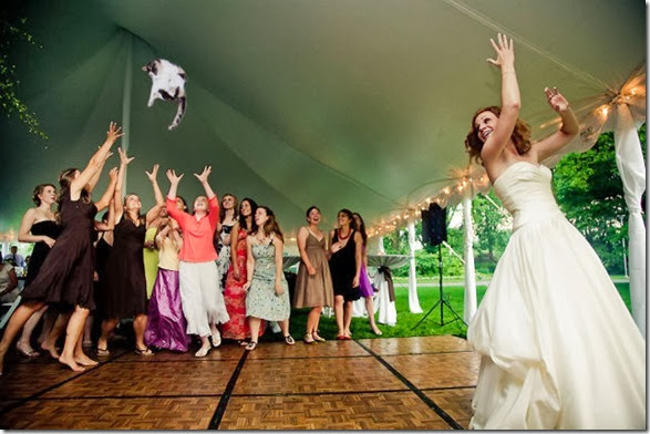 cat-toss-weddings-2