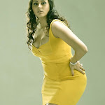 Namitha Hot (36).jpg