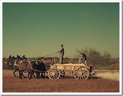 Fertilizing an oat field in Georgia (1940)