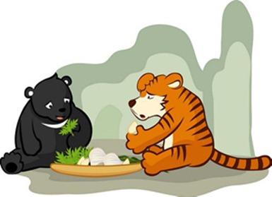 tigre y oso