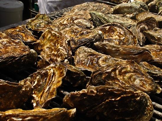 Arcata Oyster Festival (3)