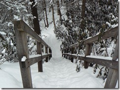 And navigate steps!!!!  (Yes, I got down these steep steps w/o taking off my snowshoes!)