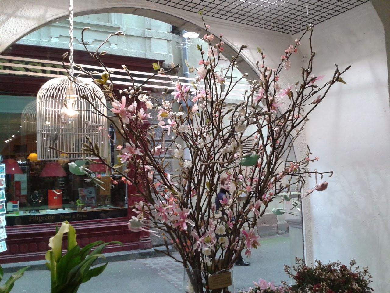 Home jasmin vitrine de printemps 2014 - Decoration vitrine printemps ...