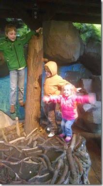 3 zoo 4-2014