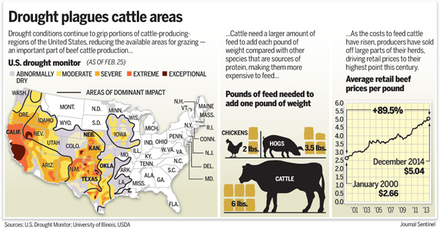 Drought plagues U.S. cattle areas, 25 February 2014. Unrelenting drought across large swaths of the Great Plains, Texas, and California has led to the smallest U.S. cattle herd since 1951, shrinking the supply of beef. That has sent prices higher for everything from rump roasts to rib-eyes. Photo: U.S. Drought Monitor / University of Illinois / USDA